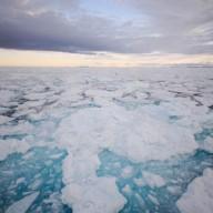 Dernières mauvaises nouvelles de la banquise arctique